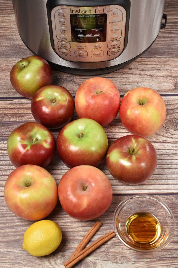 Instant Pot Applesauce| WednesdayNightCafe.com
